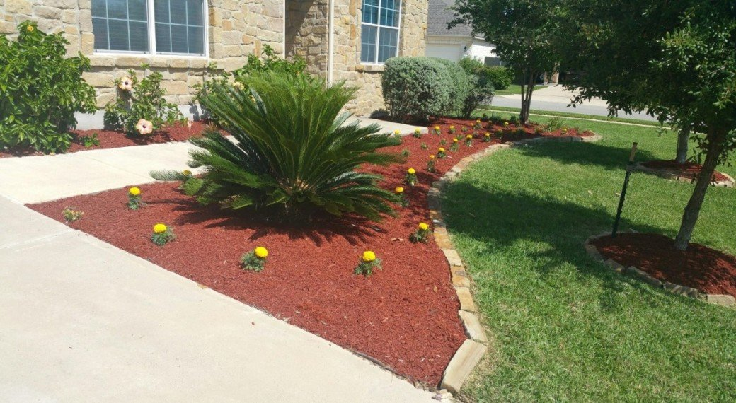 Austin lawn care and landscaping services blooming seasons for Gardening and landscaping services